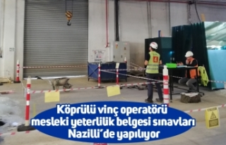 Köprülü vinç operatörü mesleki yeterlilik belgesi...