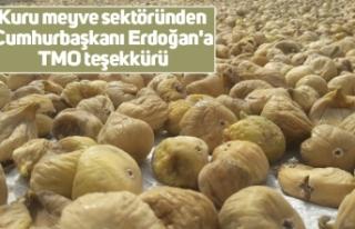 Kuru meyve sektöründen Cumhurbaşkanı Erdoğan'a...