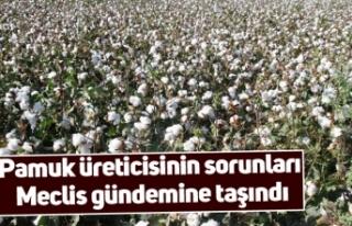 Pamuk üreticisinin sorunları Meclis gündemine taşındı