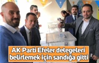 AK Parti Efeler delegeleri belirlemek için sandığa...