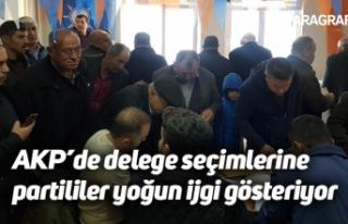 AKP'de delege seçimlerine partililer yoğun ijgi...