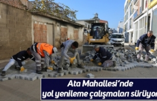 Ata Mahallesi'nde yol yenileme çalışmaları sürüyor