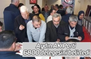 Aydın AK Parti 6800 delegesini belirledi