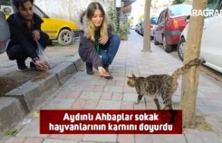Aydınlı Ahbaplar sokak hayvanlarının karnını...