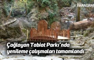 Çağlayan Tabiat Parkı'nda yenileme çalışmaları...