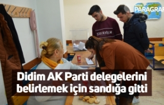 Didim AK Parti delegelerini belirlemek için sandığa...