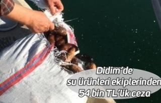 Didim'de su ürünleri ekiplerinden 54 bin TL'lik...