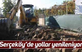 Serçeköy'de yollar yenileniyor