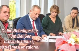 Didim Belediyesi ile Tüm Bel Sen arasında toplu...