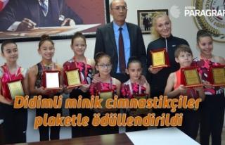 Didimli minik cimnastikçiler plaketle ödüllendirildi