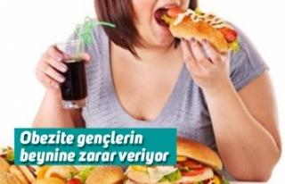 Obezite gençlerin beynine zarar veriyor