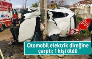 Otomobil elektrik direğine çarptı; 1 kişi öldü
