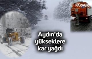 Aydın'da yükseklere kar yağdı