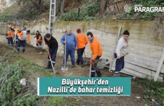 Büyükşehir'den Nazilli'de bahar temizliği