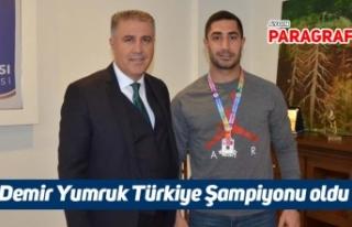 Demir Yumruk Türkiye Şampiyonu oldu