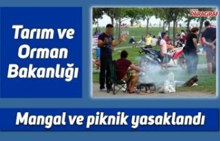 Mangal ve piknik yasaklandı
