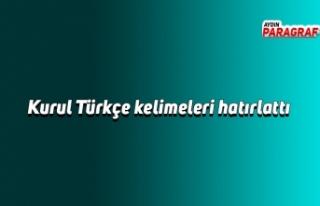 Kurul Türkçe kelimeleri hatırlattı