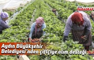 Aydın Büyükşehir Belediyesi'nden çiftçiye...