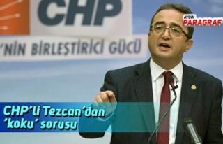 CHP'li Tezcan'dan 'koku' sorusu