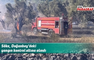 Söke, Doğanbey'deki yangın kontrol altına...