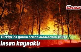 Türkiye'de yanan orman alanlarının %98'i insan...