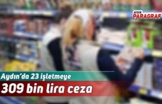 Aydın'da 23 işletmeye 309 bin lira ceza