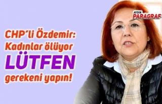 CHP'li Özdemir: Kadınlar ölüyor lütfen gerekeni...