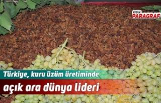 Türkiye, kuru üzüm üretiminde açık ara dünya...