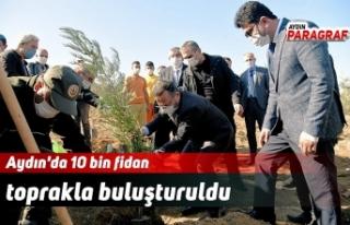 Aydın'da 10 bin fidan toprakla buluşturuldu
