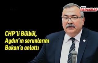 CHP'li Bülbül, Aydın'ın sorunlarını Bakan'a...