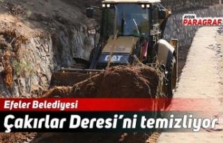 Efeler Belediyesi Çakırlar Deresi'ni temizliyor