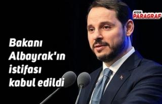 Hazine ve Maliye Bakanı Berat Albayrak'ın istifası...