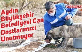Aydın Büyükşehir Belediyesi Can Dostlarımızı...