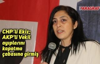 CHP'li Ekiz; AKP'li Vekil ayıplarını...