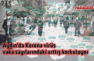 Aydın'da Korona virüs vaka sayılarındaki...