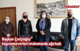 Başkan Çerçioğlu hayvanseverleri makamında ağırladı