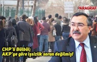 CHP'li Bülbül; AKP'ye göre işsizlik sorun...