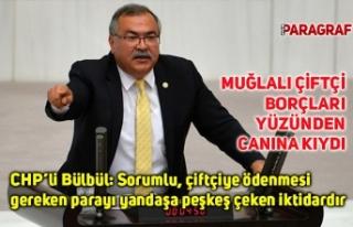 CHP'li Bülbül: Sorumlu, çiftçiye ödenmesi gereken...