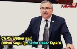 """CHP'li Bülbül'den Bakan Soylu'ya """"Sedat..."""
