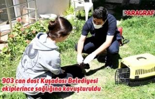 903 can dost Kuşadası Belediyesi ekiplerince sağlığına...