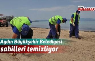 Aydın Büyükşehir Belediyesi sahilleri temizliyor