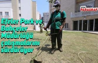 Efeler Park ve Bahçeler Müdürlüğü çalışmalarını sürdürüyor