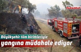 Büyükşehir tüm birimleriyle yangına müdahale ediyor