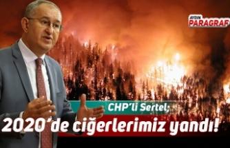 CHP'li Sertel; 2020'de de ciğerlerimiz yandı!