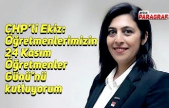 CHP'li Ekiz: Öğretmenlerimizin 24 Kasım Öğretmenler Günü'nü kutluyorum