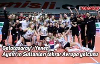Galatasaray'ı Yenen Aydın'ın Sultanları tekrar Avrupa yolcusu