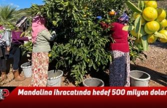 Mandalina ihracatında hedef 500 milyon dolar