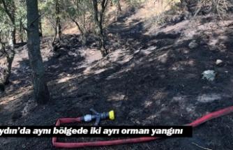 Aydın'da aynı bölgede iki ayrı orman yangını