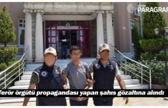 Terör örgütü propagandası yapan şahıs gözaltına alındı