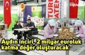 Aydın inciri, 2 milyar euroluk  katma değer oluşturacak